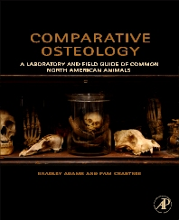 Cover image for Comparative Osteology
