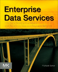 Cover image for Enterprise Data Services