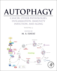 Autophagy: Cancer, Other Pathologies, Inflammation, Immunity, Infection, and Aging