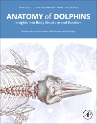 Cover image for Anatomy of Dolphins