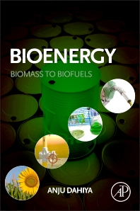 Cover image for Bioenergy