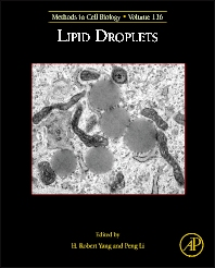 Lipid Droplets - 1st Edition - ISBN: 9780124080515, 9780124095212