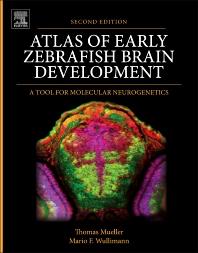 Cover image for Atlas of Early Zebrafish Brain Development