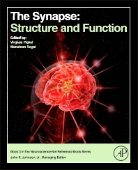 Cover image for The Synapse