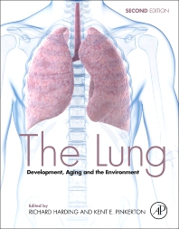 Cover image for The Lung