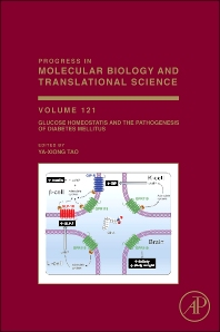 Glucose Homeostatis and the Pathogenesis of Diabetes Mellitus - 1st Edition - ISBN: 9780128001011, 9780128002940
