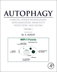 Autophagy: Cancer, Other Pathologies, Inflammation, Immunity, Infection, and Aging - 1st Edition - ISBN: 9780128010433, 9780128010525