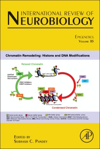 Cover image for Epigenetics