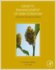 Cover image for Genetic Enhancement of Rabi Sorghum