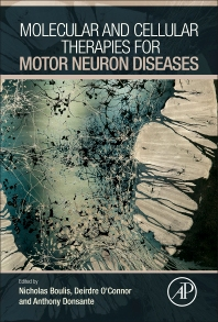 Cover image for Molecular and Cellular Therapies for Motor Neuron Diseases
