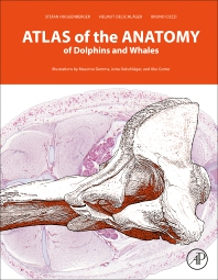 Cover image for Atlas of the Anatomy of Dolphins and Whales