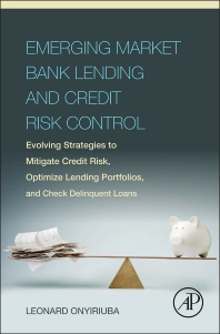 Cover image for Emerging Market Bank Lending and Credit Risk Control