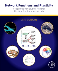 Cover image for Network Functions and Plasticity
