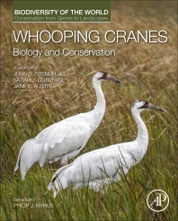Cover image for Whooping Cranes: Biology and Conservation