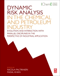 Cover image for Dynamic Risk Analysis in the Chemical and Petroleum Industry