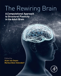 Book cover image for The Rewiring Brain
