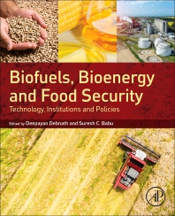 Cover image for Biofuels, Bioenergy and Food Security
