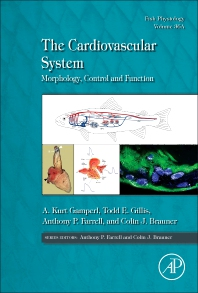 Cover image for The Cardiovascular System