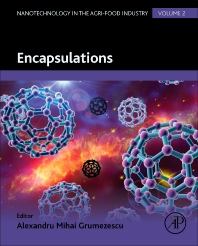 Cover image for Encapsulations