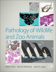 Cover image for Pathology of Wildlife and Zoo Animals