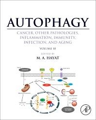 Autophagy: Cancer, Other Pathologies, Inflammation, Immunity, Infection, and Aging - 1st Edition - ISBN: 9780128054215, 9780128094280