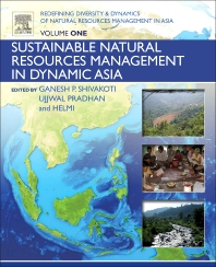 Cover image for Redefining Diversity and Dynamics of Natural Resources Management in Asia, Volume 1