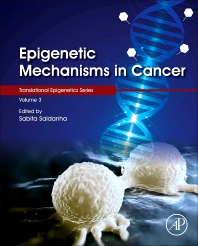 Epigenetic Mechanisms in Cancer - 1st Edition - ISBN: 9780128095522, 9780128134603