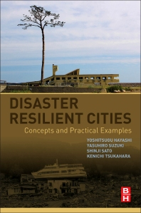 Cover image for Disaster Resilient Cities