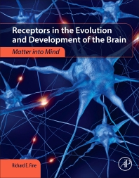 Cover image for Receptors in the Evolution and Development of the Brain
