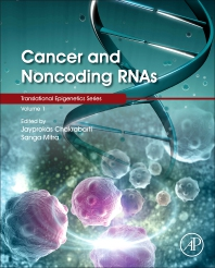 Cancer and Noncoding RNAs - 1st Edition - ISBN: 9780128110225, 9780128134375