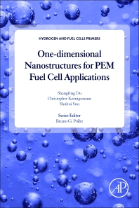 Cover image for One-dimensional Nanostructures for PEM Fuel Cell Applications