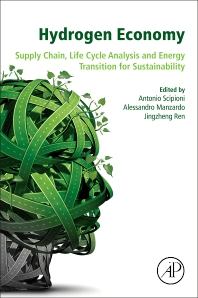 Cover image for Hydrogen Economy