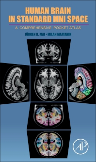 cover of Human Brain in Standard MNI Space - 1st Edition