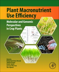Cover image for Plant Macronutrient Use Efficiency