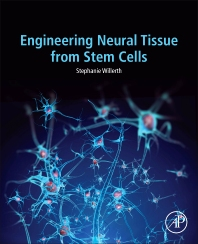Cover image for Engineering Neural Tissue from Stem Cells