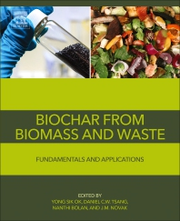 Cover image for Biochar from Biomass and Waste