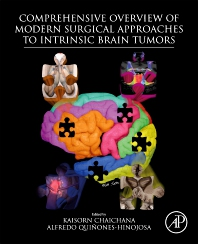 Cover image for Comprehensive Overview of Modern Surgical Approaches to Intrinsic Brain Tumors