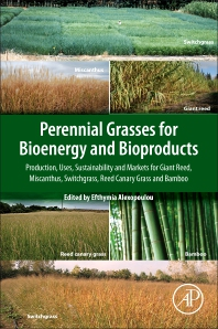 Cover image for Perennial Grasses for Bioenergy and Bioproducts