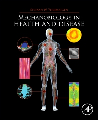 Cover image for Mechanobiology in Health and Disease