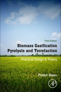 Cover image for Biomass Gasification, Pyrolysis and Torrefaction