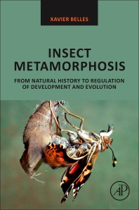 Cover image for Insect Metamorphosis