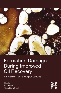 Cover image for Formation Damage during Improved Oil Recovery