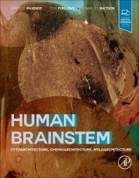 Human Brainstem - 1st Edition - ISBN: 9780128141847