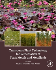 Cover image for Transgenic Plant Technology for Remediation of Toxic Metals and Metalloids