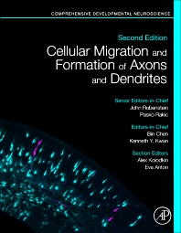 Cover image for Cellular Migration and Formation of Axons and Dendrites