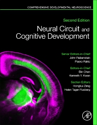 Cover image for Neural Circuit and Cognitive Development