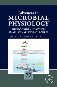 Cover image for Nitric Oxide and Other Small Signalling Molecules