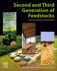 Cover image for Second and Third Generation of Feedstocks