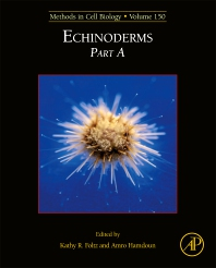 Cover image for Echinoderms