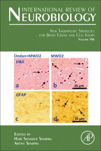 Cover image for New Therapeutic Strategies for Brain Edema and Cell Injury